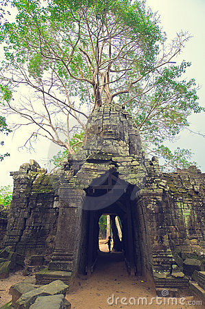 Free Banyan Tree Over The Door From Ta Som. Angkor Wat Royalty Free Stock Photography - 8516227