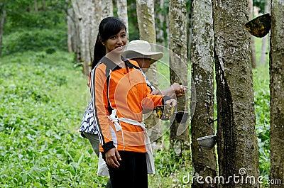 Banyuwangi Editorial Image