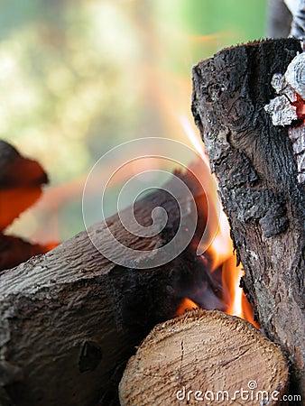 Barbaque fire