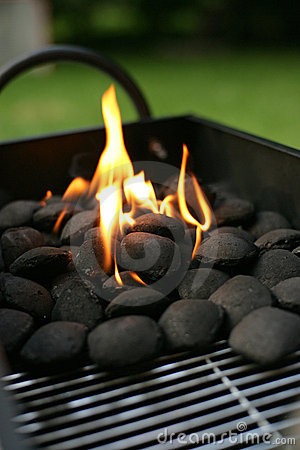 Free Barbecue Charcoals Royalty Free Stock Photography - 6037177