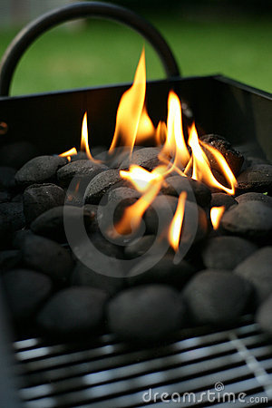 Free Barbecue Charcoals Royalty Free Stock Photos - 6037178
