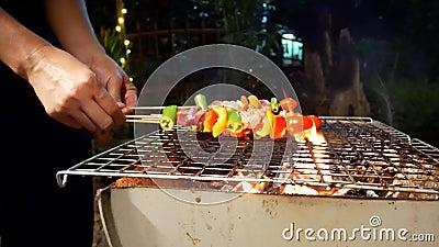 Barbecue Spicy dispara sobre a churrasqueira Produtos hortícolas, carne de porco e frango grelhados com pimentos para sino Churra vídeos de arquivo