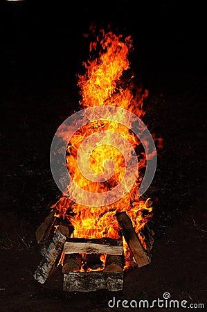 Barbecue wild fire