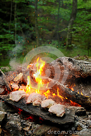 Barbecue in the woods