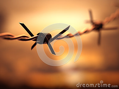 Barbed Wire Dof