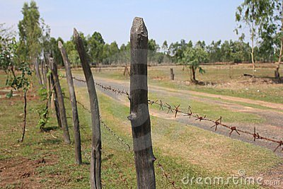 A barbed wire fence