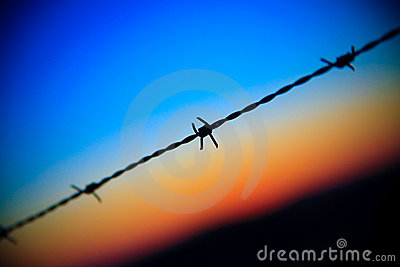 Barbed wire on sunset sky