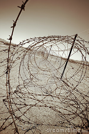 Free Barbed Wires Stock Photos - 1128423