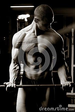 barbell biceps curls