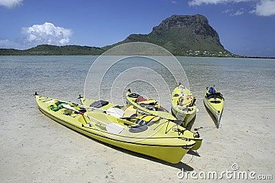 Barcos de pá coloridos na água pouco profunda desobstruída