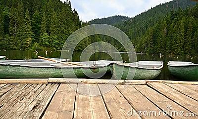 Barcos en el lago