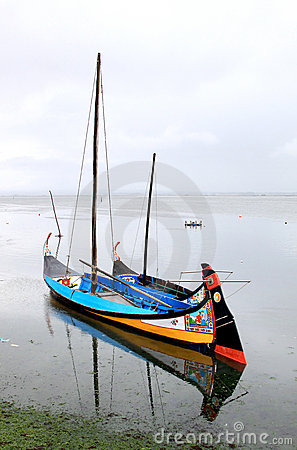Barcos moliceiros, traditional boats of Portugal
