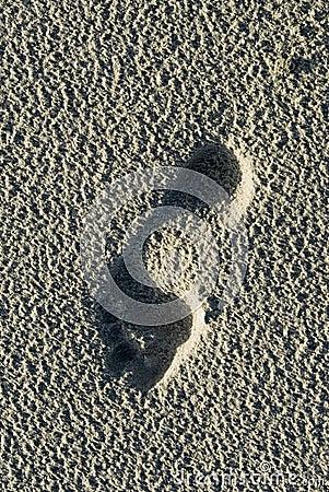 Bare footprint on Schiermonnikoog beach
