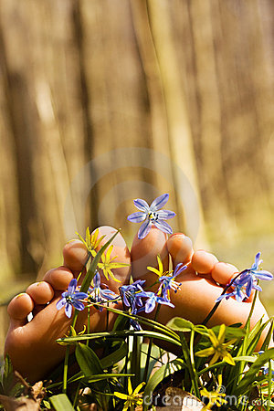 Barefooted tender woman s feet in spring flowers