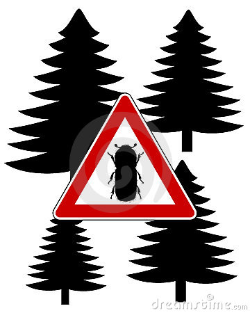 Bark-beetle attention sign