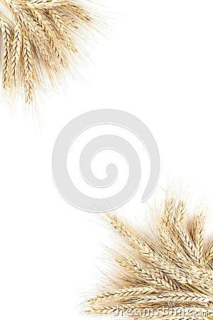Barley frame