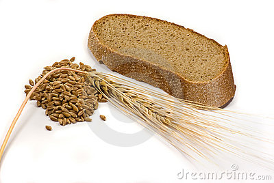 Barley grains, ear and piece of bread
