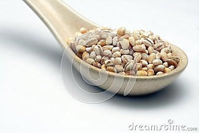 Barley on spoon