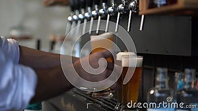 Barman per la birra archivi video