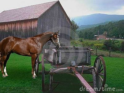 Barn and cart