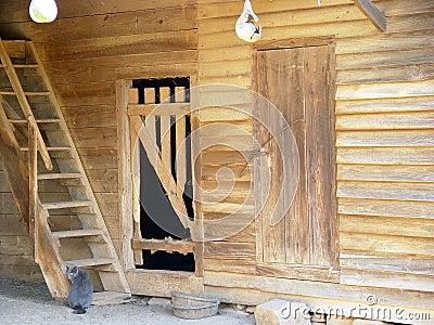 Barn cat Stock Photo
