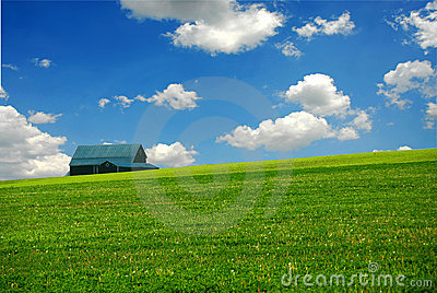 Barn in farm field