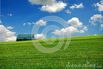 Barn in farm field