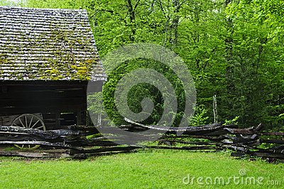 Barn in forest