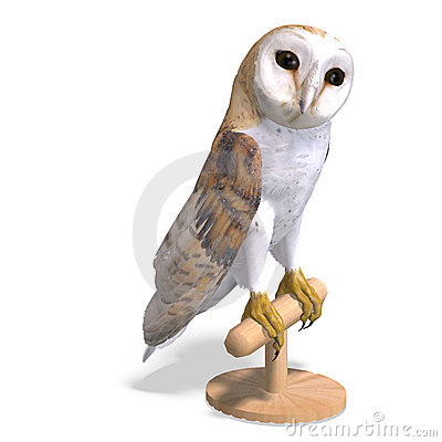 Free Barn Owl Bird. 3D Rendering With Clipping Path Royalty Free Stock Photo - 14508365