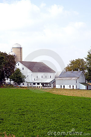 Barns and silos on farm