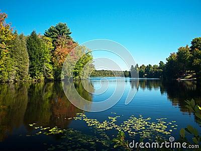 Barnum pond,adirondack state park