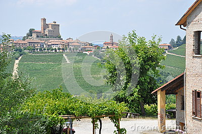 Barolo winery with vineyard  Langhe Alba  Italy