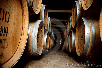 Old wine barrels in cellar