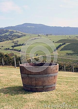 Barrel of Grapes