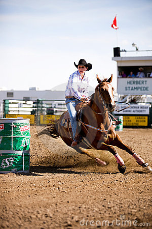 Free Barrel Racing Royalty Free Stock Images - 4258489