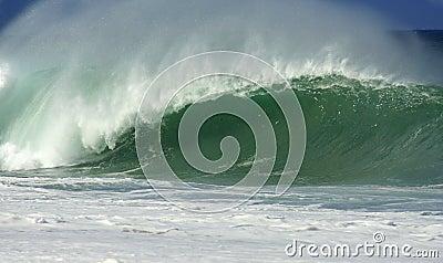 Barrelling Wave