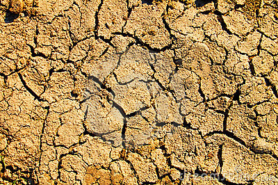 Barren earth texture