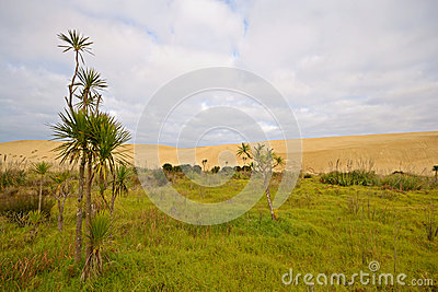 Barren sand dunes and green meadows