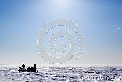 Barren Snow Landscape