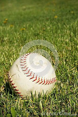 Free Baseball Ball Stock Image - 14358661
