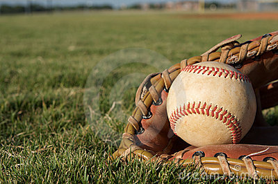 Baseball in a Glove