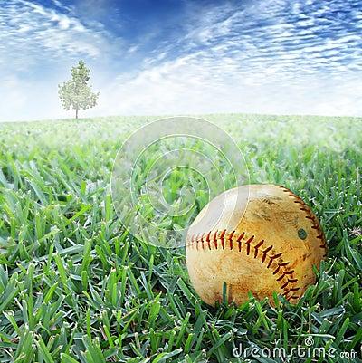 Free Baseball In Grass Stock Image - 5455281
