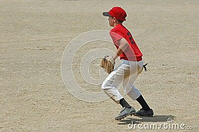 Baseball player fields a ground ball