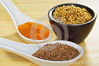 Basic Curry Spices