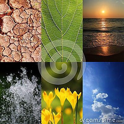 Basic elements of nature and ecology
