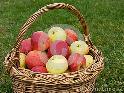 Basket of apples, closeup