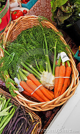 Basket of Carrots and Fennel