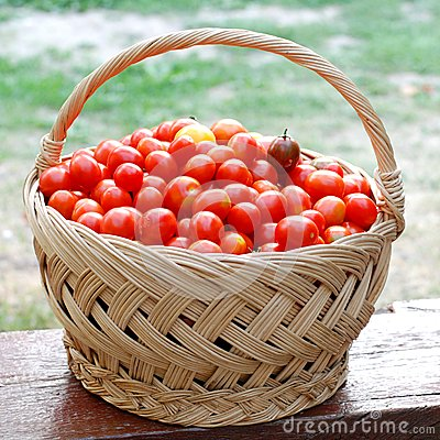 Basket with cherry tomatoes