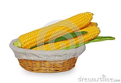 Basket of corn