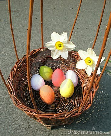 Basket with easter eggs and narcissus
